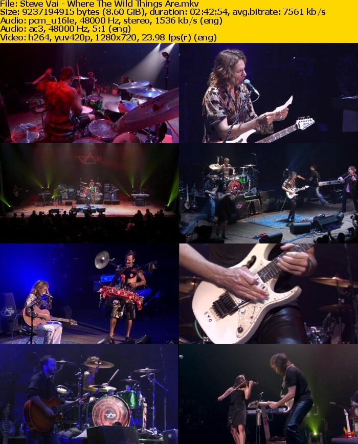 steve vai wild thing are